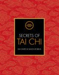 Cover image for Secrets of Tai Chi